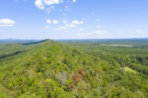 Columbiana Mountain Top Homesites & Timber in Shelby, AL (9 of 37)
