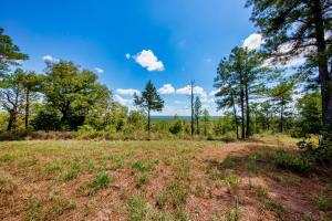 Columbiana Mountain Top Homesites & Timber in Shelby, AL (3 of 37)