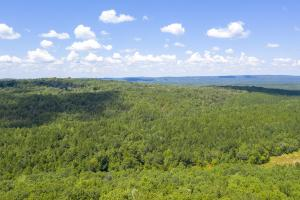 Columbiana Mountain Top Homesites & Timber in Shelby, AL (13 of 37)