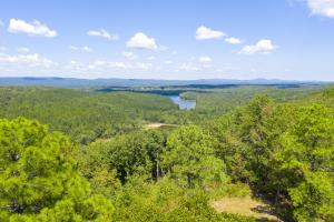 Columbiana Mountain Top Homesites & Timber - Shelby County, AL