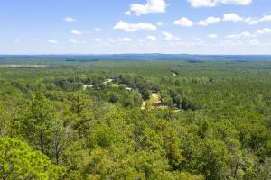 Columbiana Mountain Top Homesites & Timber in Shelby, AL (5 of 37)