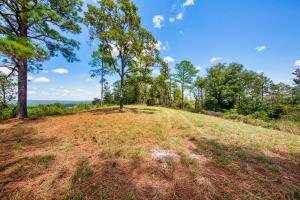 Columbiana Mountain Top Homesites & Timber in Shelby, AL (4 of 37)
