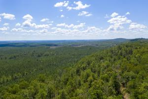Columbiana Mountain Top Homesites & Timber in Shelby, AL (11 of 37)