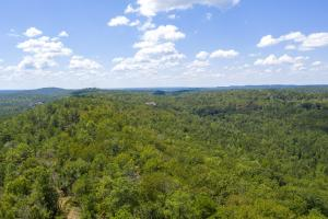 Columbiana Mountain Top Homesites & Timber in Shelby, AL (12 of 37)