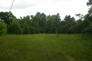 189 acre Hunting Farm in Southern Kentucky in Metcalfe, KY (27 of 38)