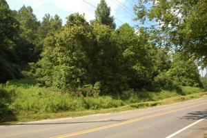 Pigeon Forge Development Tract in Sevier, TN (9 of 14)