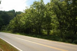 Pigeon Forge Development Tract in Sevier, TN (5 of 14)