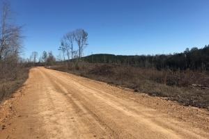 Etteca Road Homesite - Hunting in Fayette, AL (5 of 17)