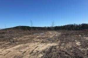Etteca Road Homesite - Hunting - Fayette County AL
