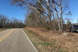 Etteca Road Homesite - Hunting in Fayette, AL (4 of 17)