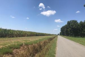 120+/- Acre Row Crop Farm in Lonoke, AR (11 of 12)