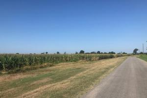 120+/- Acre Row Crop Farm in Lonoke, AR (8 of 12)