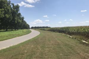 120+/- Acre Row Crop Farm in Lonoke, AR (12 of 12)