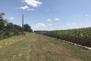 120+/- Acre Row Crop Farm in Lonoke, AR (6 of 12)