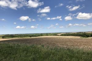 Productive Cropland with a Valley View - Butler County NE