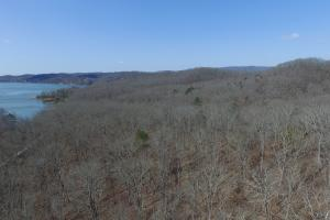 Wooded Recreation Property Near Watts Bar Lake - Roane County, TN
