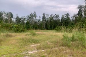 7.5 Acres Leland in Brunswick, NC (3 of 4)