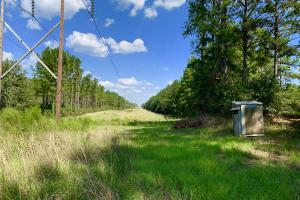 Patsaliga River Hunting & Timber Investment  in Covington, AL (18 of 20)