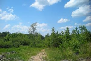 86 AC Along Tallapoose River in Haralson, GA (8 of 23)