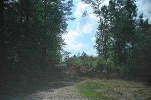 86 AC Along Tallapoose River in Haralson, GA (20 of 23)