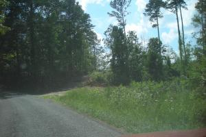 86 AC Along Tallapoose River in Haralson, GA (5 of 23)