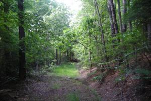 86 AC Along Tallapoose River in Haralson, GA (22 of 23)