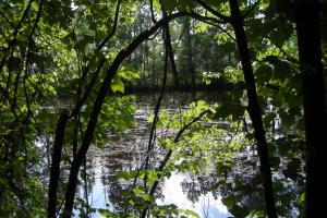 86 AC Along Tallapoose River in Haralson, GA (11 of 23)