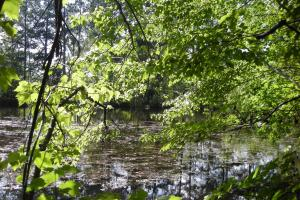 86 AC Along Tallapoose River in Haralson, GA (21 of 23)