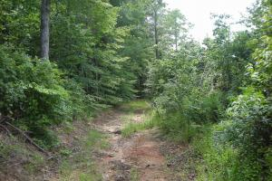 86 AC Along Tallapoose River in Haralson, GA (10 of 23)