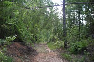 86 AC Along Tallapoose River in Haralson, GA (15 of 23)