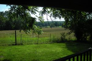 64 AC +/- Farm with Cabin Home - Haralson County GA