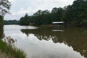 Patsaliga Creek Point A Lake River Camp Lot 6 - Covington County AL