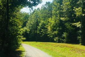 Lancaster Boxcar Road Timber Tract and Recreation