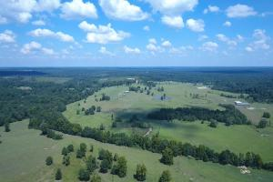 Sprawling 346 acre Ranch and Homesite in Tyler, TX (10 of 50)