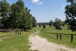 Sprawling 346 acre Ranch and Homesite in Tyler, TX (13 of 50)