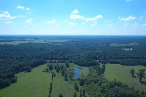Sprawling 346 acre Ranch and Homesite in Tyler, TX (9 of 50)