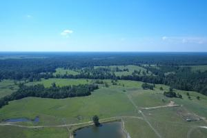 Sprawling 346 acre Ranch and Homesite in Tyler, TX (12 of 50)