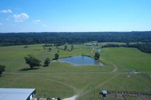 Sprawling 346 acre Ranch and Homesite in Tyler, TX (31 of 50)