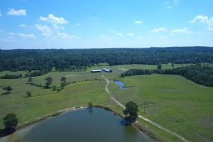 Sprawling 346 acre Ranch and Homesite in Tyler, TX (11 of 50)