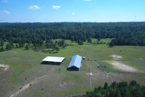 Sprawling 346 acre Ranch and Homesite in Tyler, TX (34 of 50)