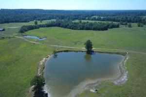 Sprawling 346 acre Ranch and Homesite in Tyler, TX (6 of 50)