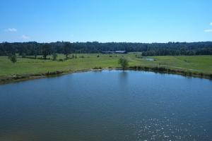 Sprawling 346 acre Ranch and Homesite in Tyler, TX (4 of 50)