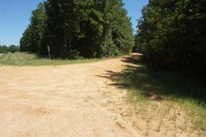 Freedom Farm Road Tract D in Wilcox, AL (2 of 4)