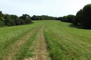 4543 Oak Rd Potosi Wisconsin , 314+/- Acres in Grant, WI (18 of 40)