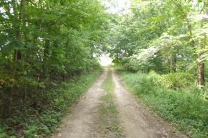 4543 Oak Rd Potosi Wisconsin , 314+/- Acres in Grant, WI (33 of 40)