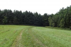 4543 Oak Rd Potosi Wisconsin , 314+/- Acres in Grant, WI (38 of 40)