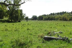 4543 Oak Rd Potosi Wisconsin , 314+/- Acres in Grant, WI (36 of 40)