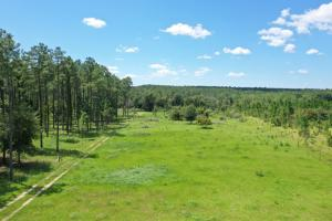 Burbon Lane Recreational, Farm Tract  - Baldwin County AL