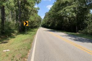 Wilmer Homesite and Recreational Tract in Mobile, AL (2 of 10)