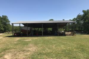Heffner Cattle Farm in Laurens, SC (84 of 96)